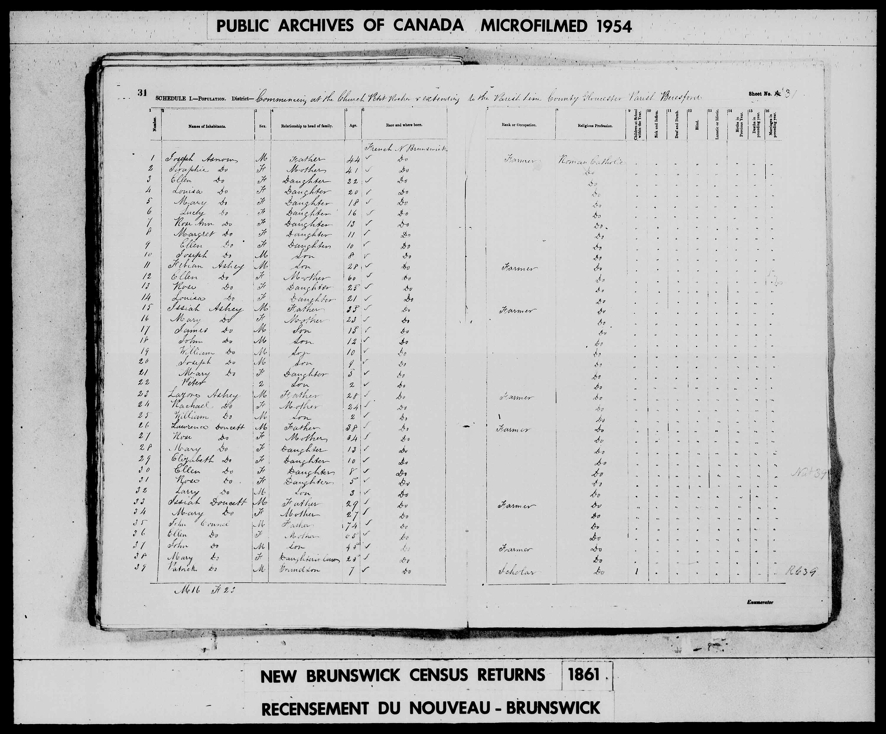 Digitized page of Census of 1861 (Canada East, Canada West, Prince Edward Island, New Brunswick and Nova Scotia), Page number 31, for Ellen Ashey