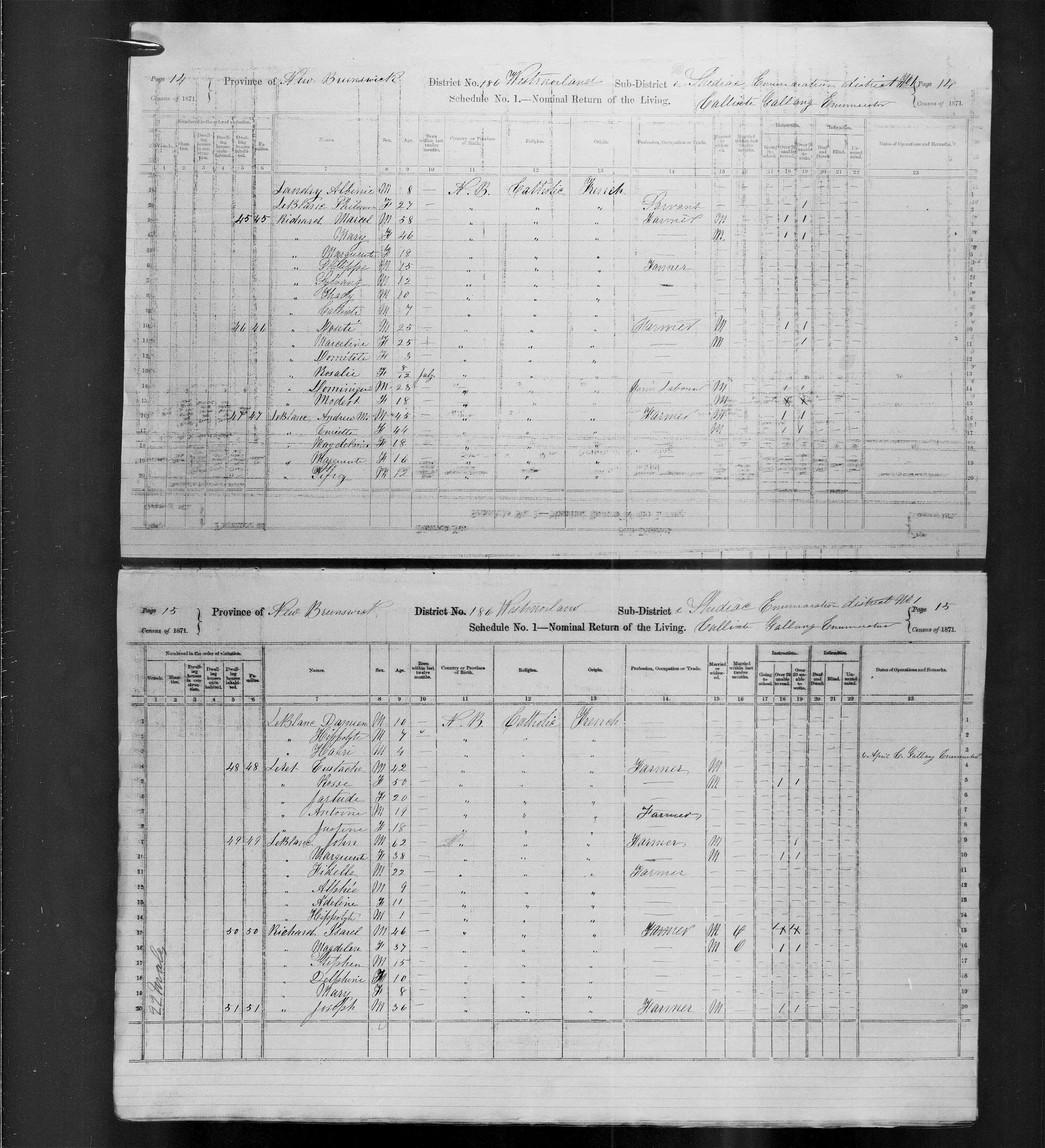 Digitized page of Census of Canada, 1871, Page number 15, for Joseph Richard