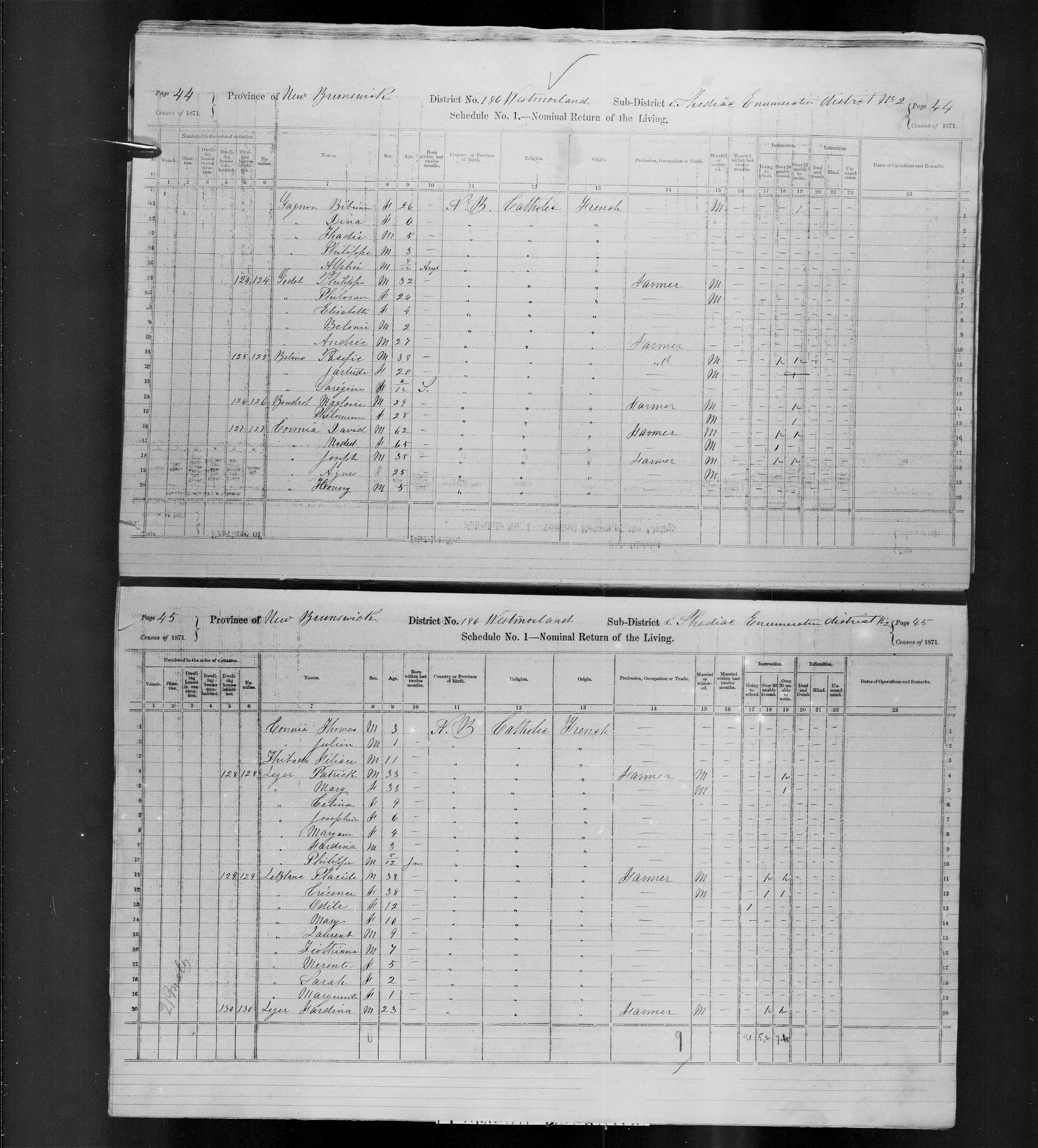 Digitized page of Census of Canada, 1871, Page number 45, for Placide Leblanc