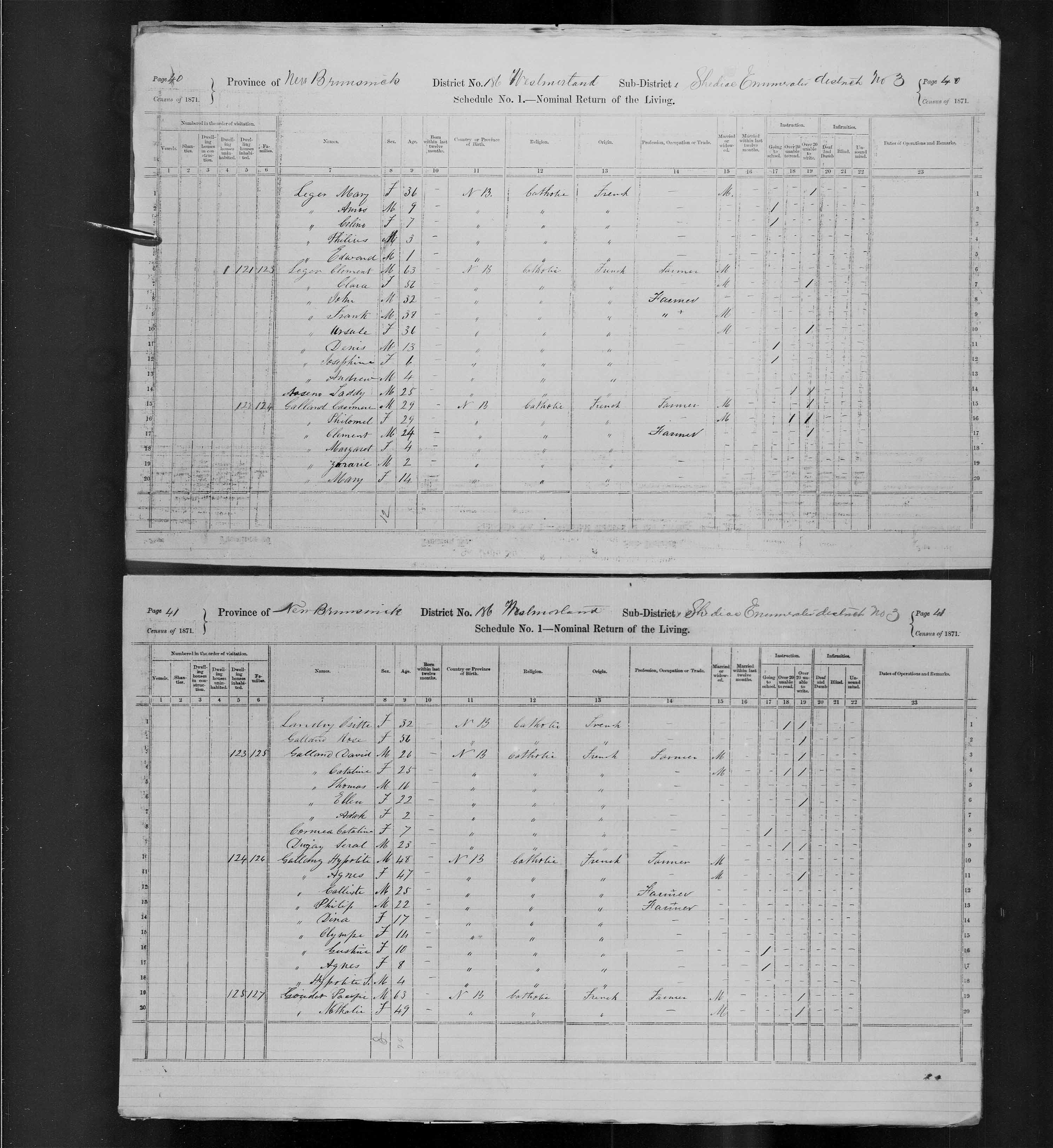 Digitized page of Census of Canada, 1871, Page number 41, for Hypolite Gallomy