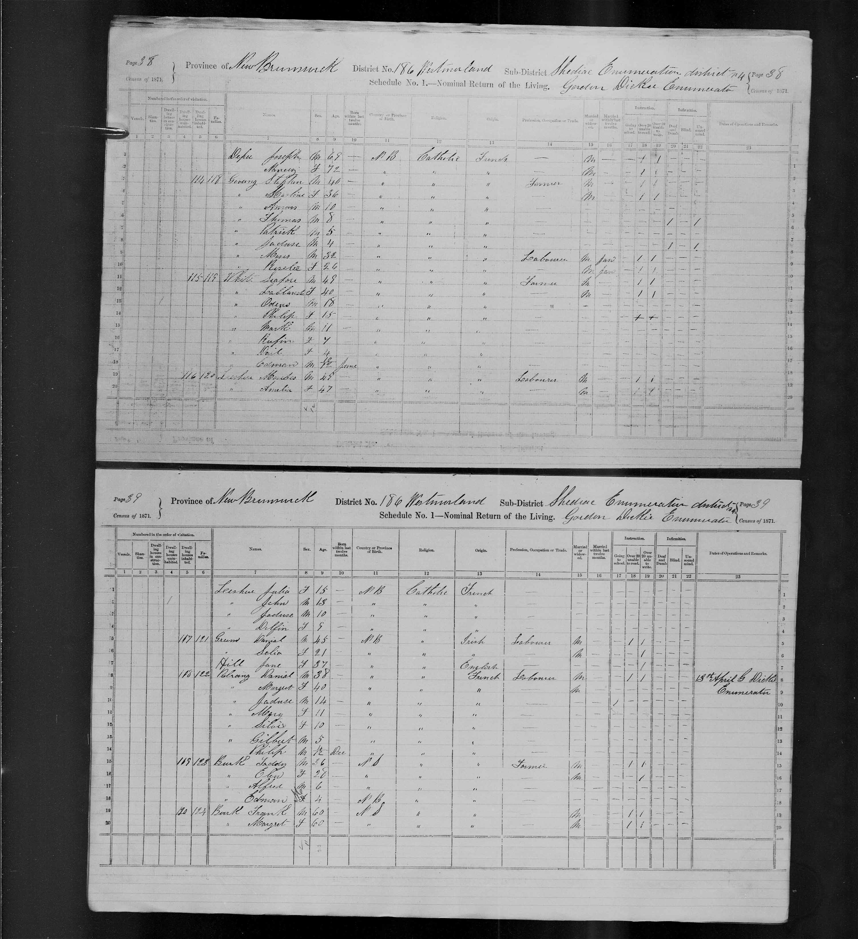 Digitized page of Census of Canada, 1871, Page number 39, for Taddy Burk