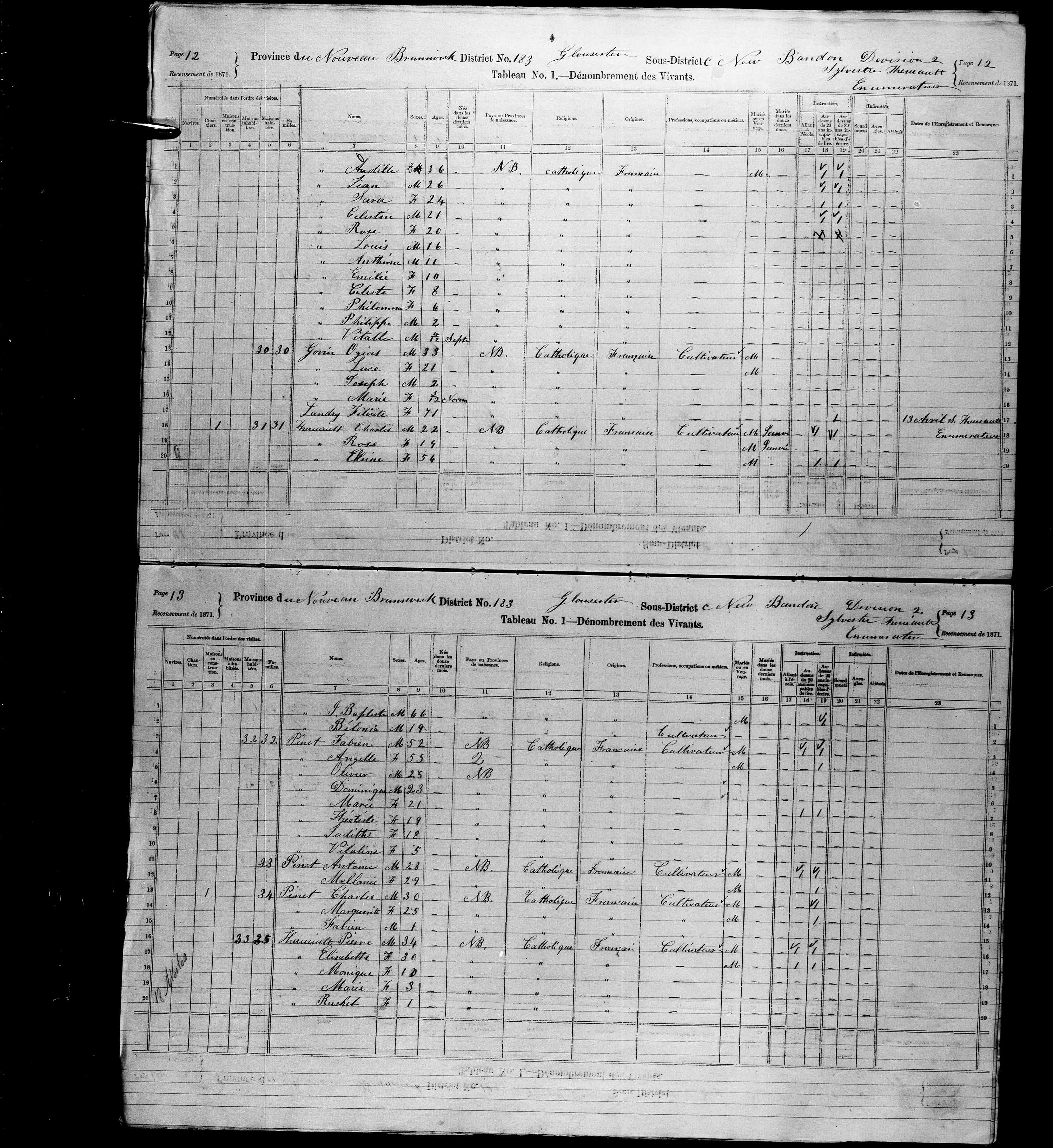 Digitized page of Census of Canada, 1871, Page number 13, for Fabien Pinet