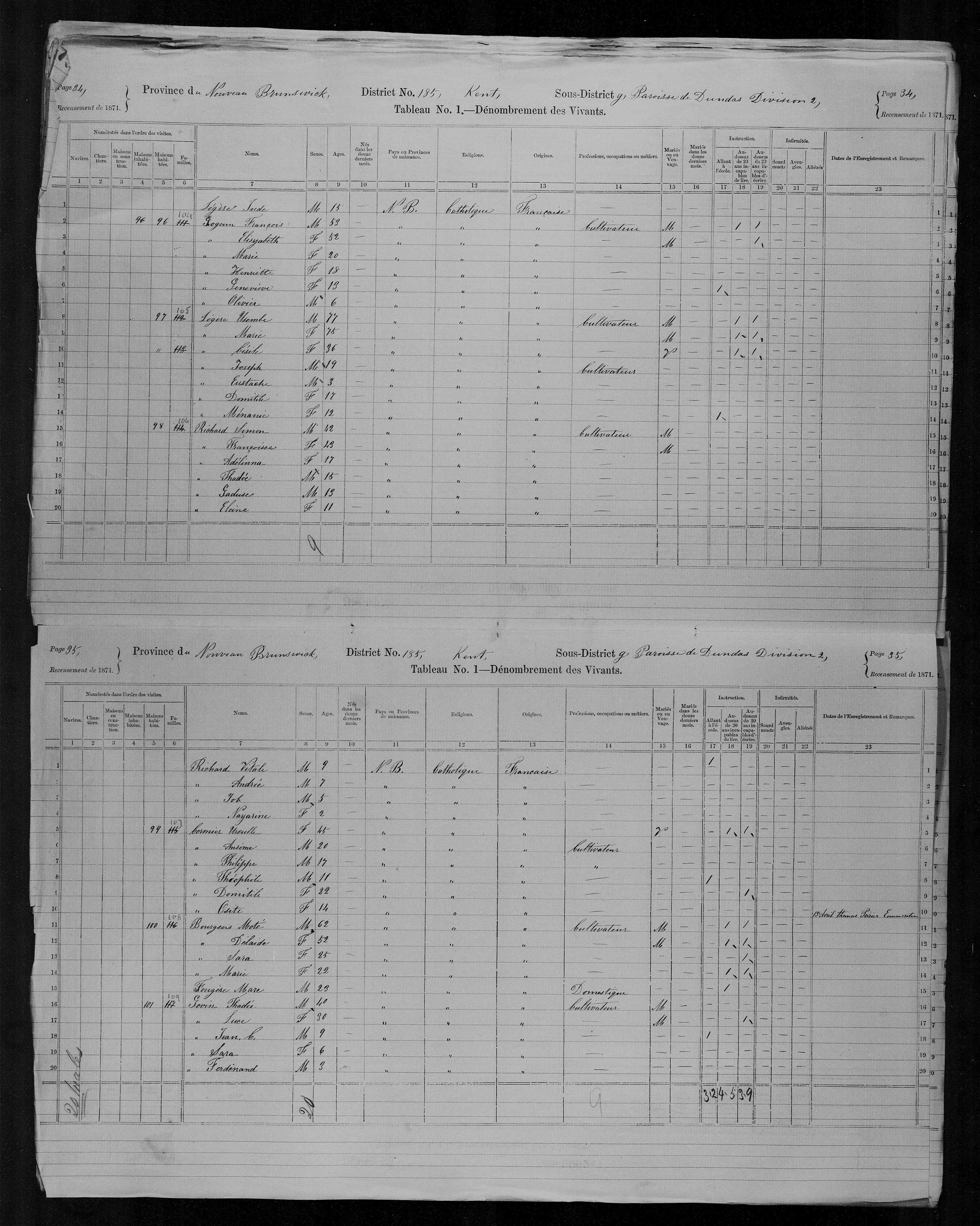 Digitized page of Census of Canada, 1871, Page number 34, for Francois Goguin