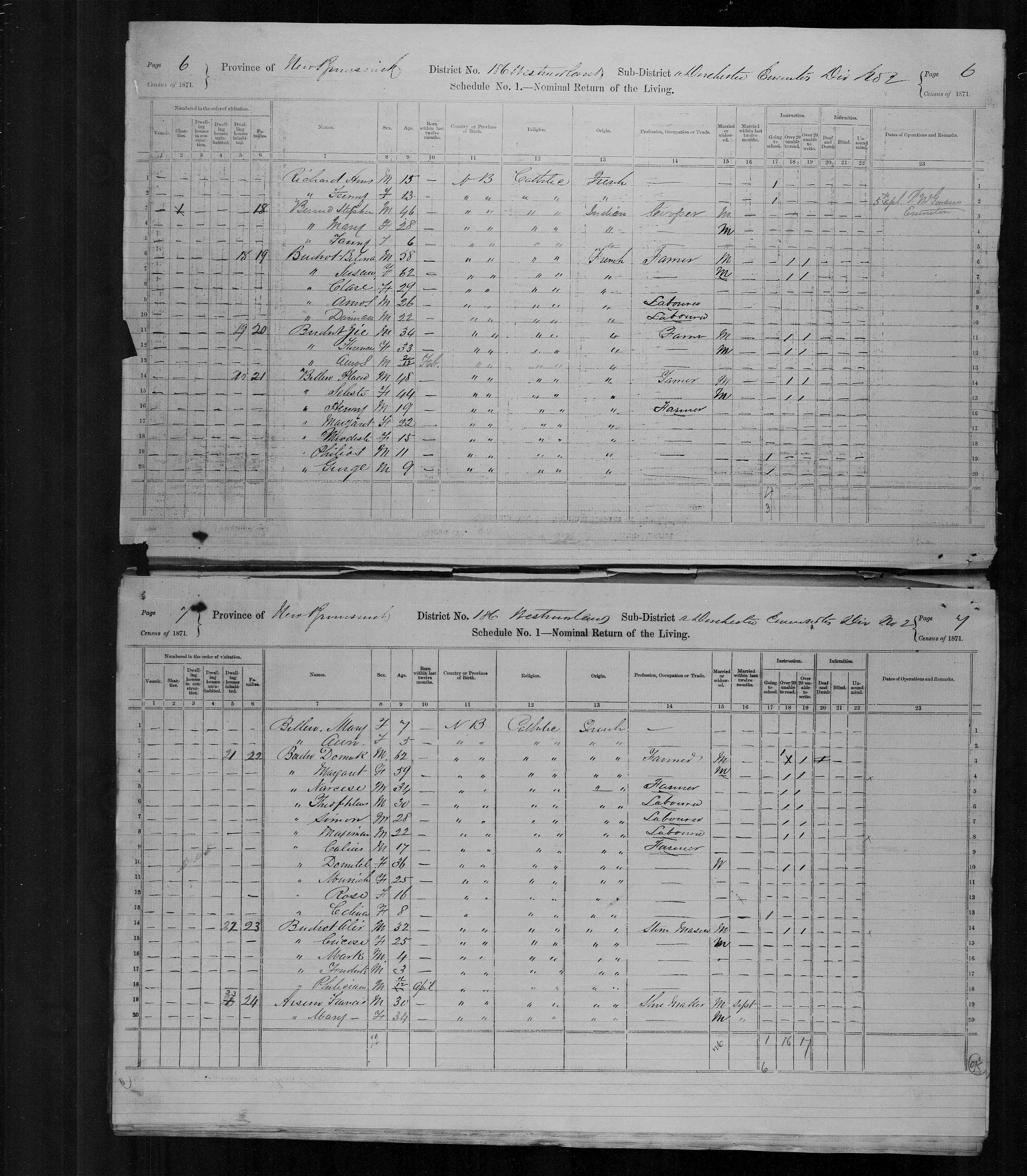 Digitized page of Census of Canada, 1871, Page number 6, for Belina Buckot