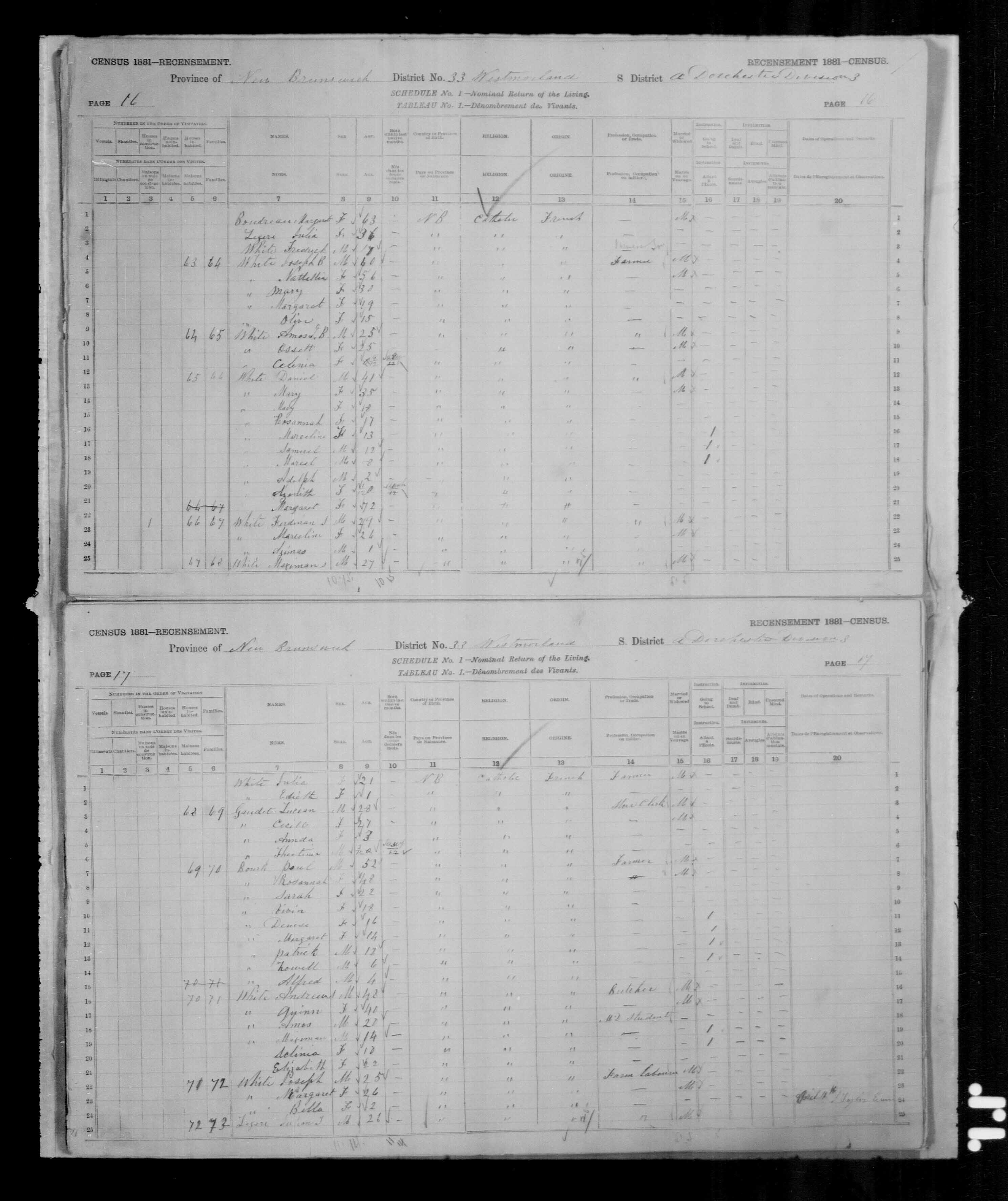Digitized page of Census of Canada, 1881, Page number 16, for Daniel WHITE