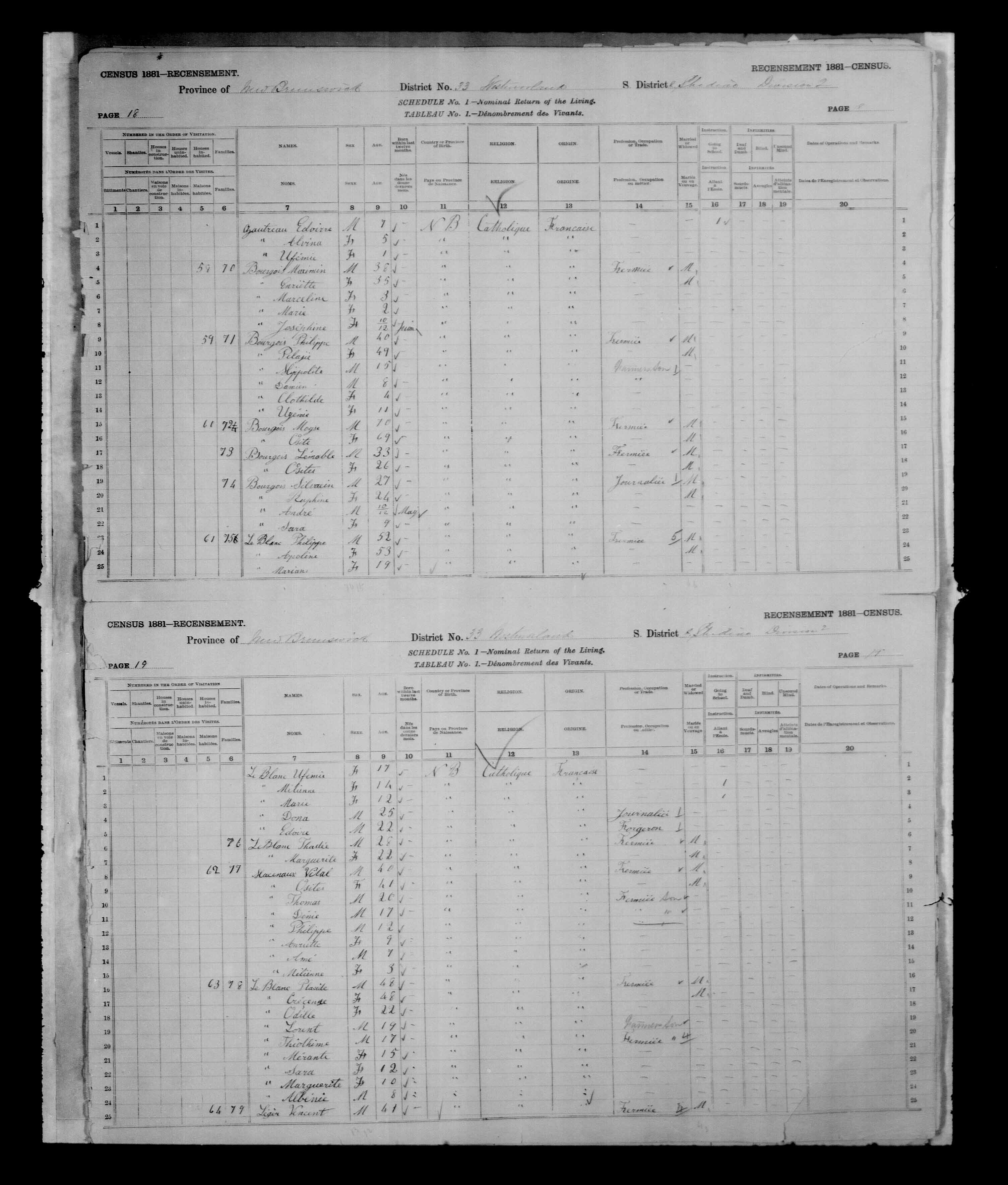 Digitized page of Census of Canada, 1881, Page number 19, for Placide LEBLANC