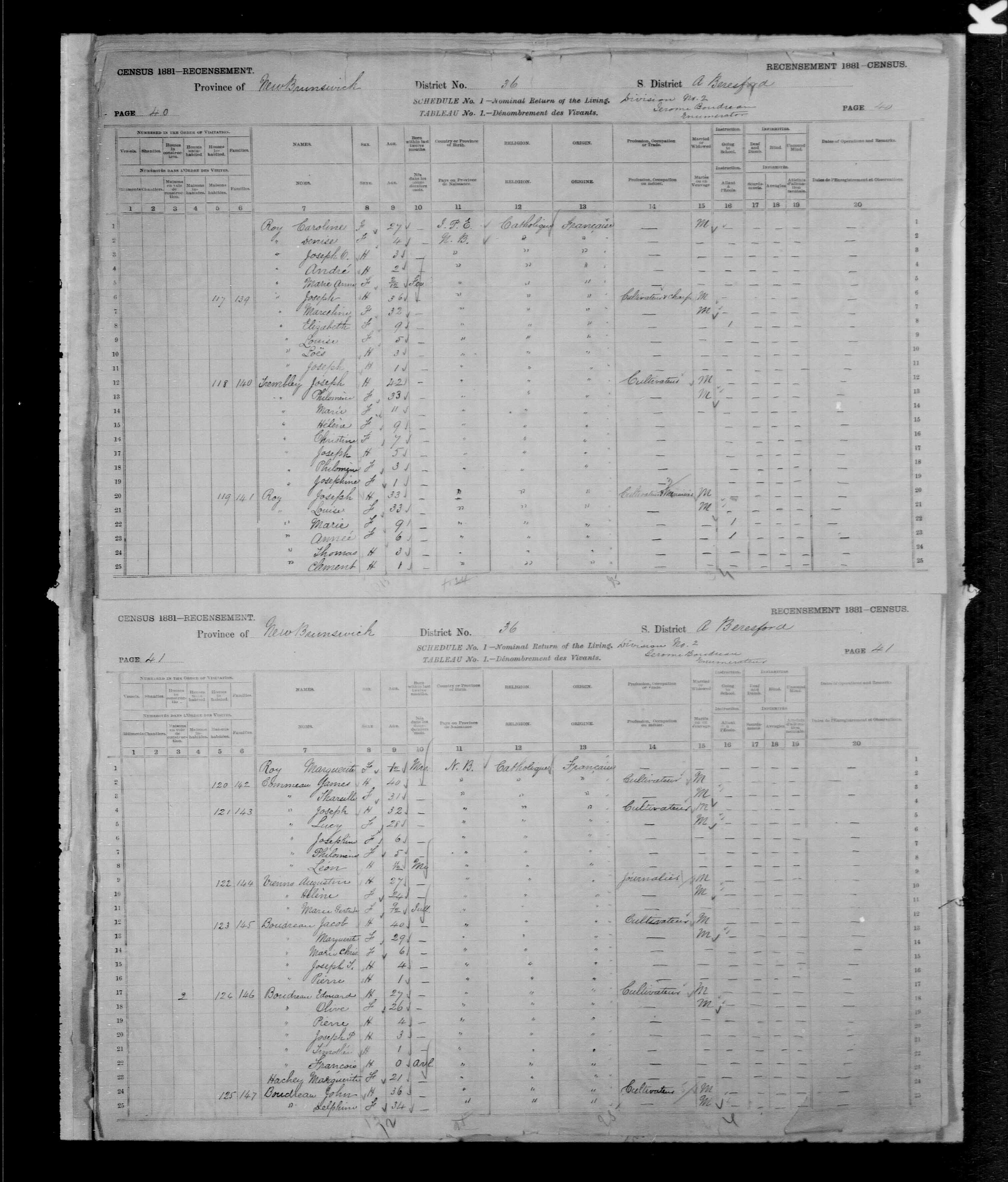 Digitized page of Census of Canada, 1881, Page number 41, for John BOUDREAU