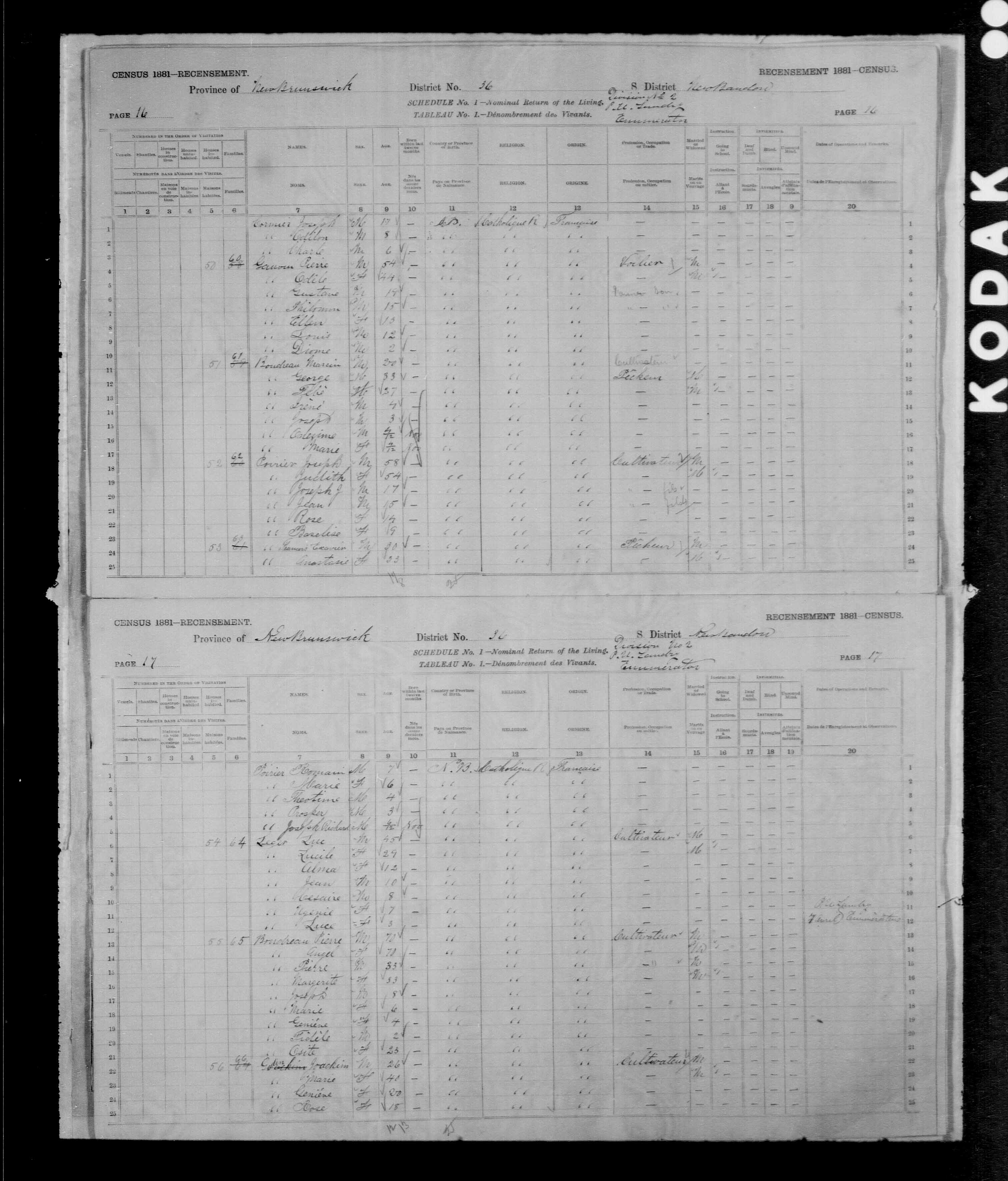 Digitized page of Census of Canada, 1881, Page number 17, for Pierre BOUDREAU