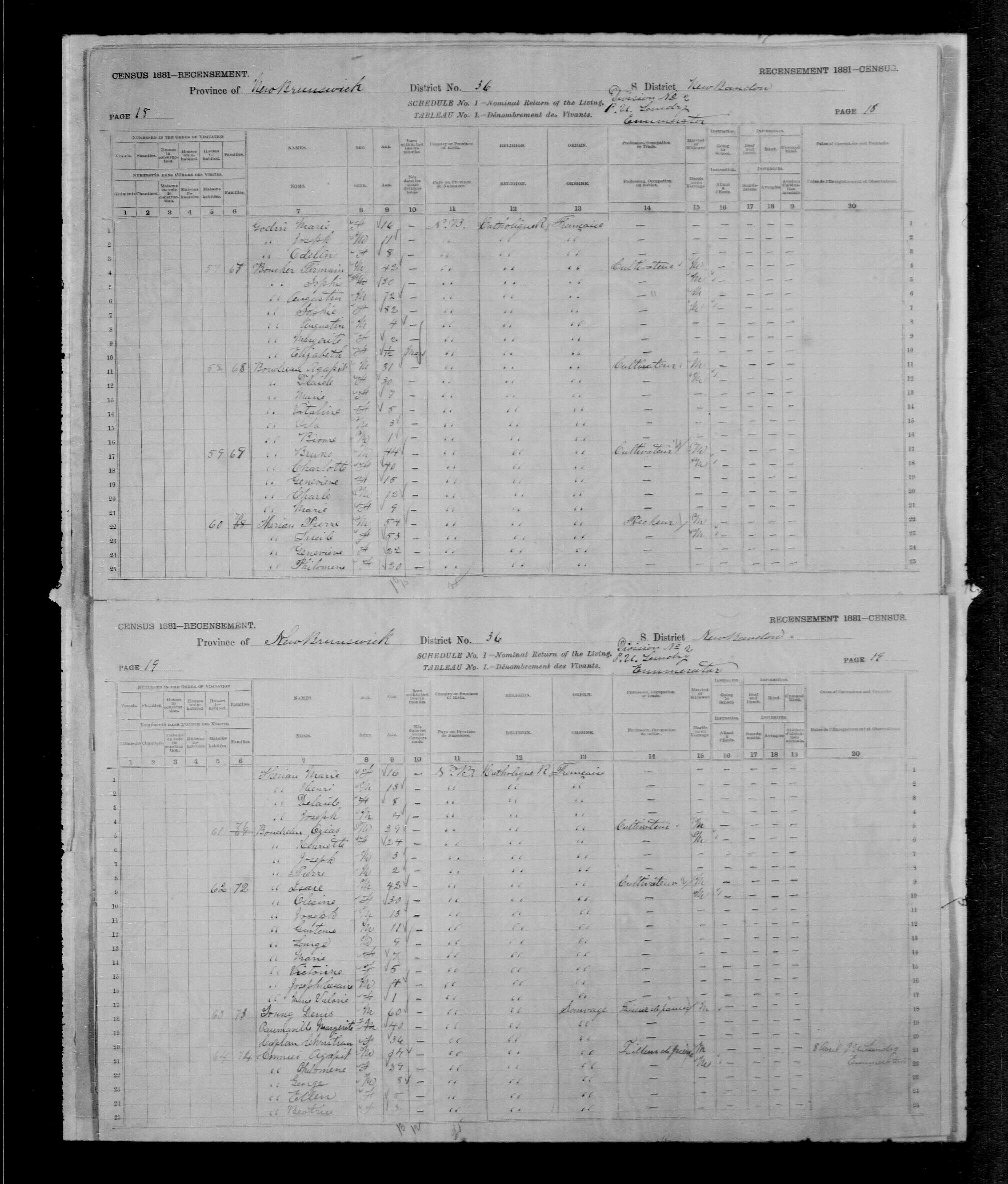 Digitized page of Census of Canada, 1881, Page number 19, for Agapit CORMIER