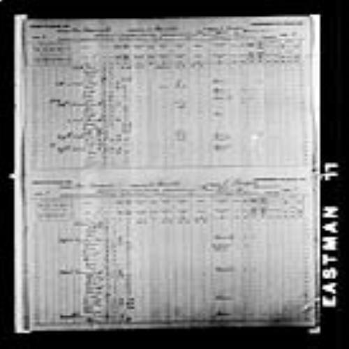 Digitized page of Census of Canada, 1891, Page number 2-3, for Joseph Vienneau