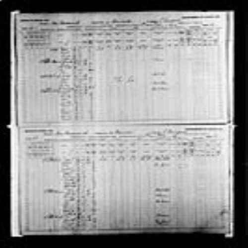 Digitized page of Census of Canada, 1891, Page number 52-53, for Michael Hachey