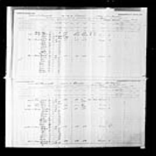 Digitized page of Census of Canada, 1891, Page number 4-5, for Antoin F Pinet