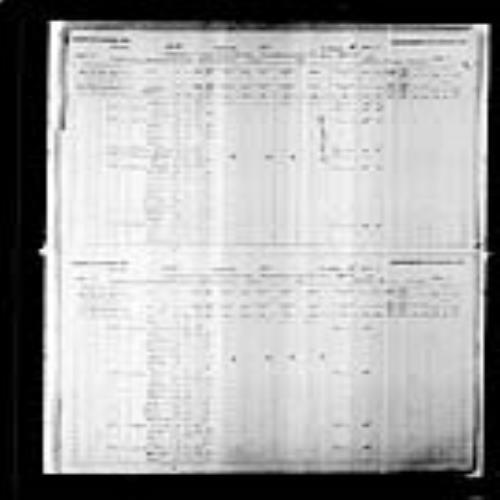 Digitized page of Census of Canada, 1891, Page number 12-13, for Frederique Bourgois