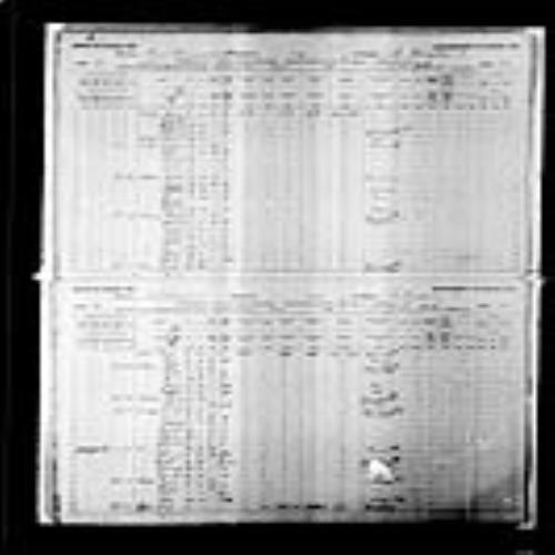 Digitized page of Census of Canada, 1891, Page number 20-21, for Aime Vieneau