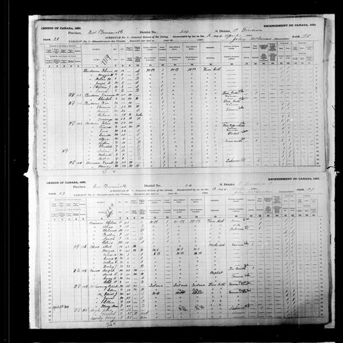 Digitized page of Census of Canada, 1891, Page number 28-29, for Zie Budreau