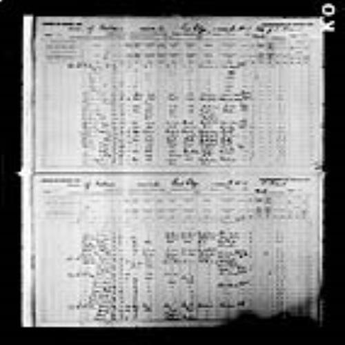 Digitized page of Census of Canada, 1891, Page number 52-53, for Egerton John James Farley