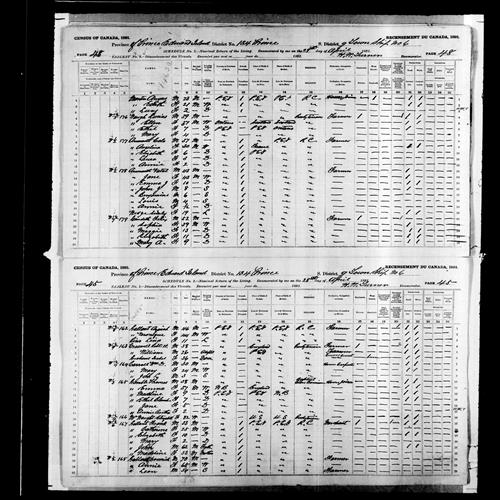Digitized page of Census of Canada, 1891, Page number 45-48, for Sophia Gaudette