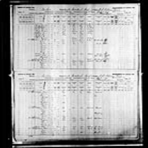 Digitized page of Census of Canada, 1891, Page number 70-71, for Dunbar Browne