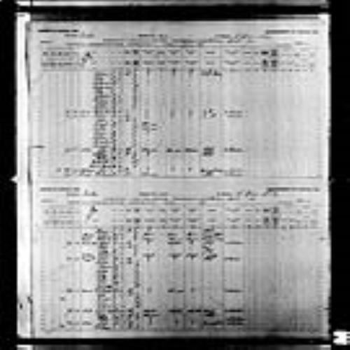 Page numérisée du Recensement du Canada (1891), Page numéro 10-11, pour Clorida Viger