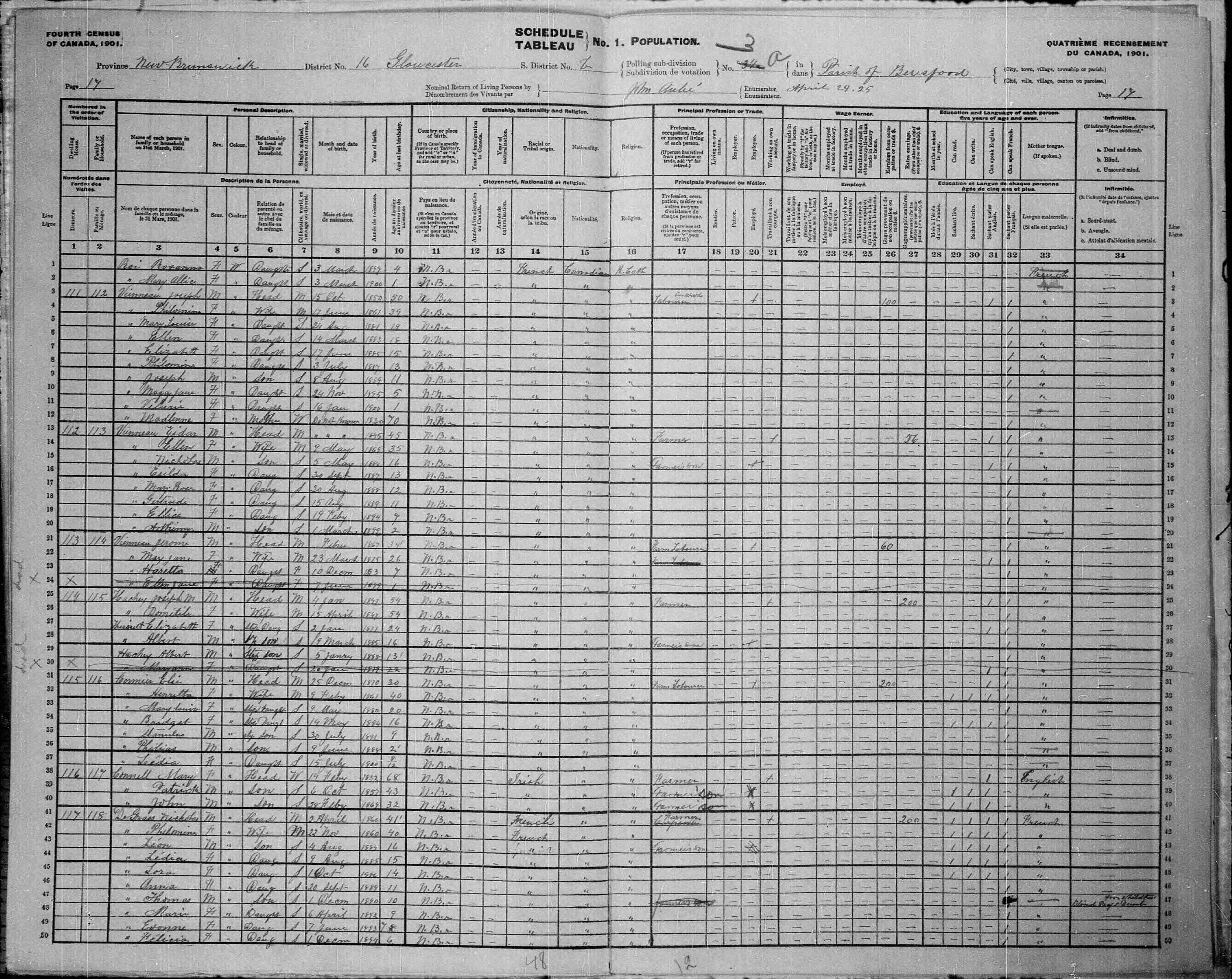 Digitized page of Census of Canada, 1901, Page number 17, for Joseph Vienneau