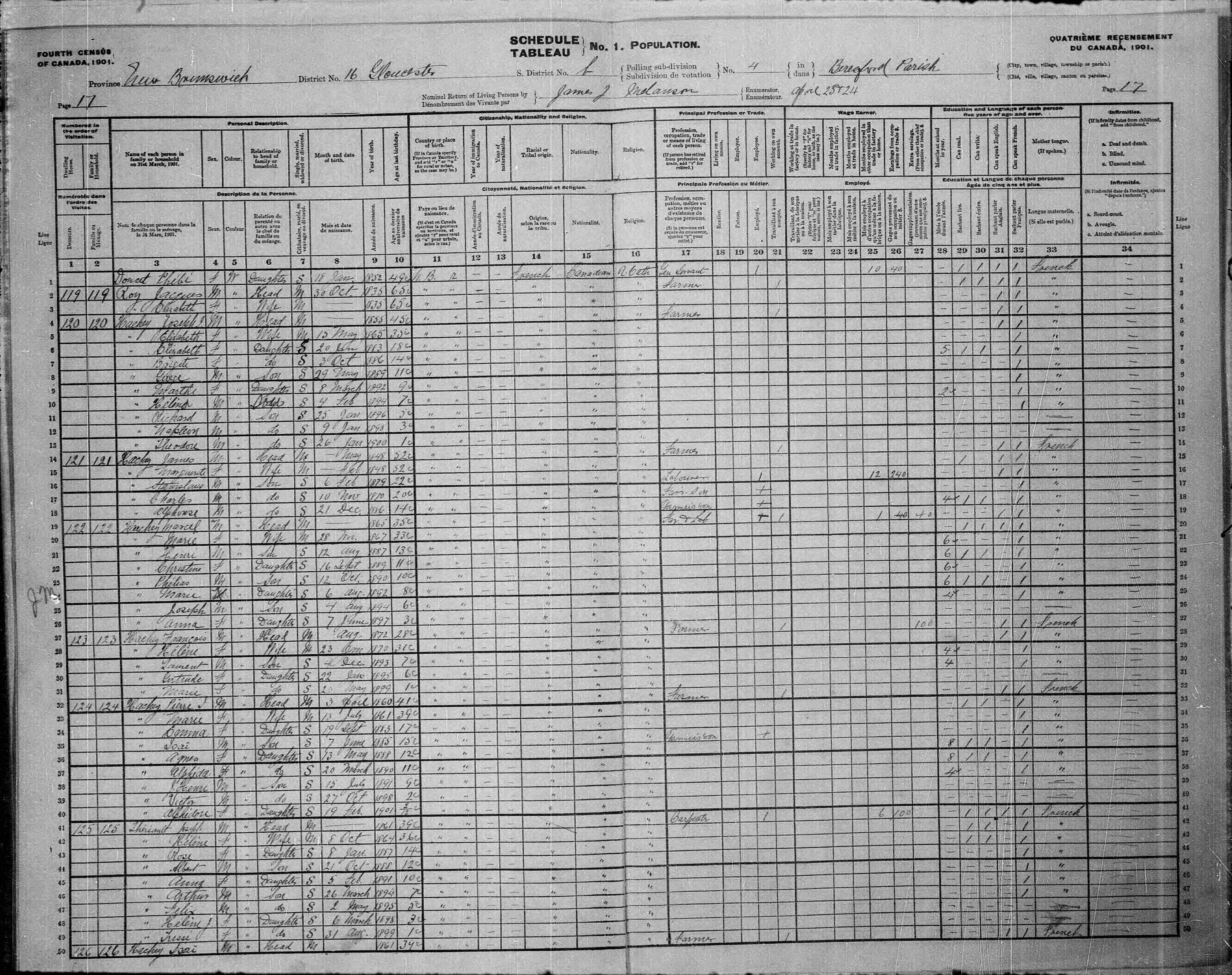 Digitized page of Census of Canada, 1901, Page number 17, for Marcel Hachey