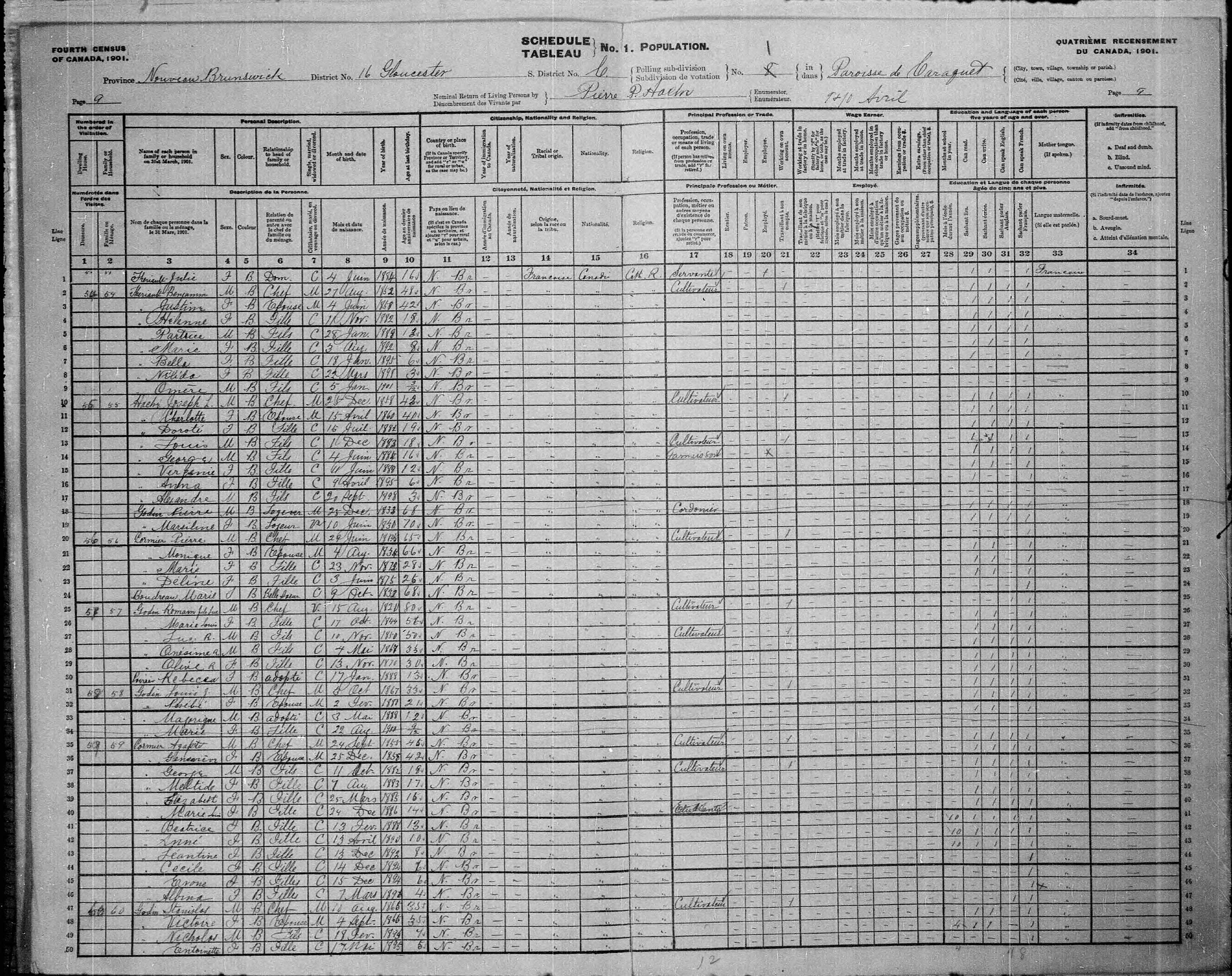 Digitized page of Census of Canada, 1901, Page number 9, for Agathe Cormier