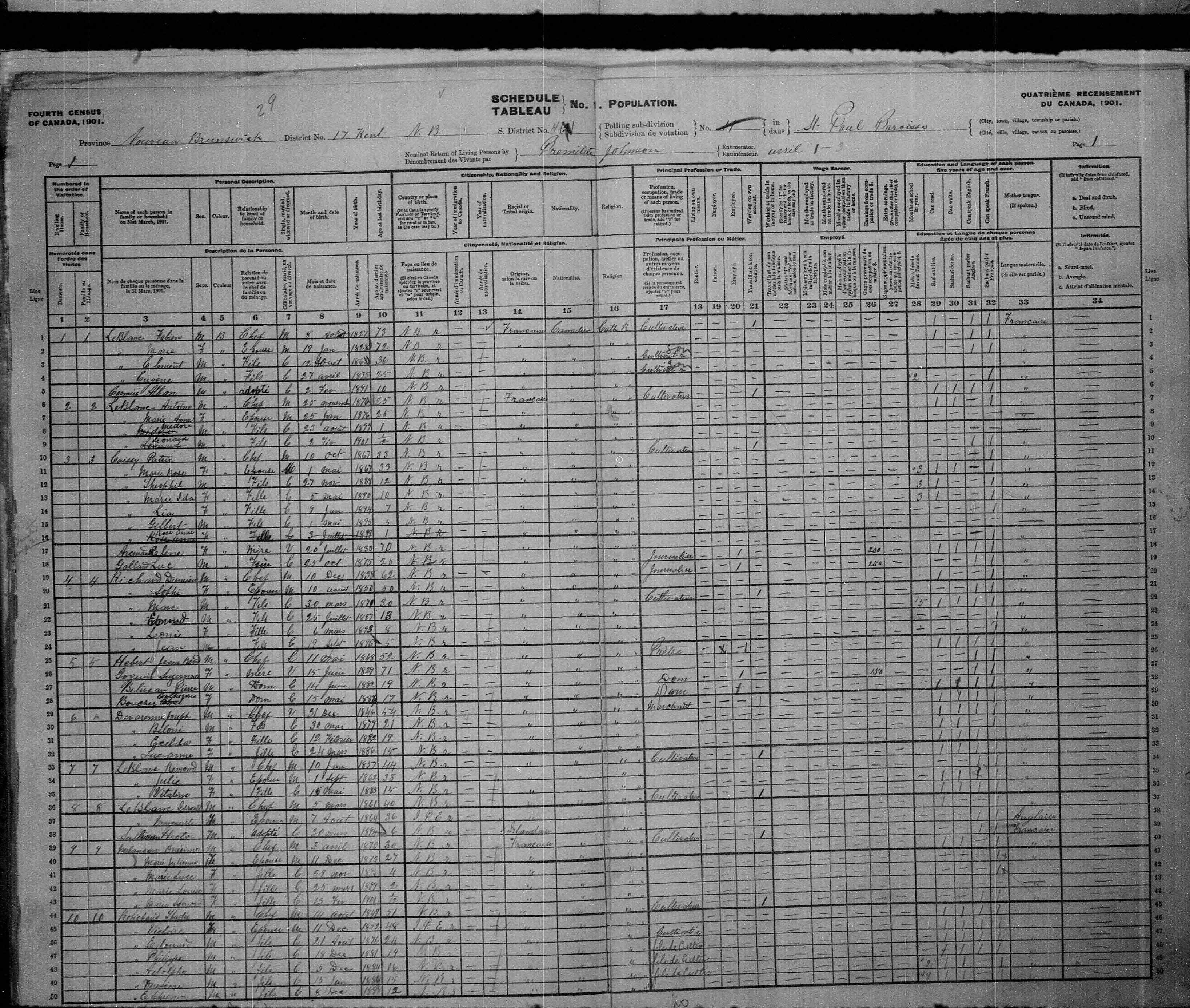 Digitized page of Census of Canada, 1901, Page number 1, for Damien Richard