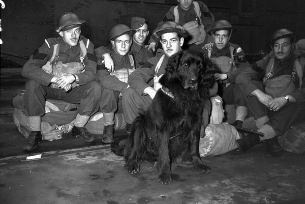 """Infantrymen of """"C"""" Company, Royal Rifles of Canada, and their mascot en route to Hong Kong. Vancouver, British Columbia, Canada, ca. 27 October 1941."""