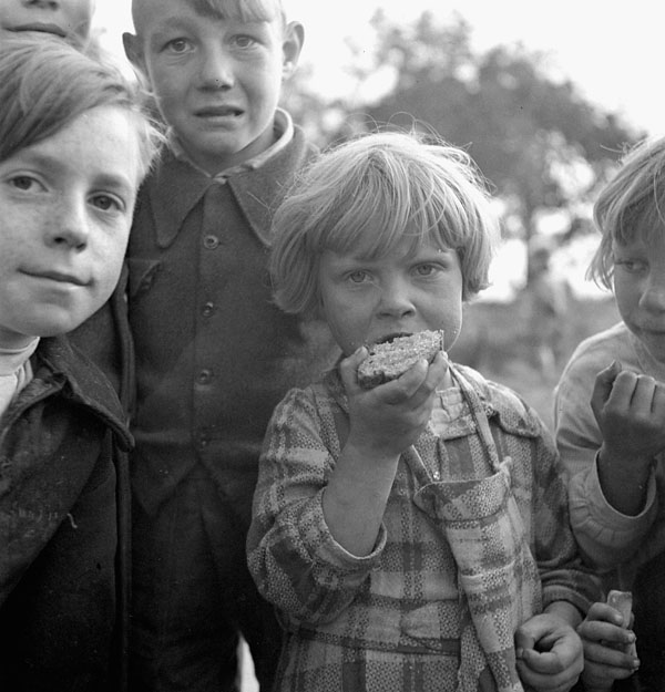 Janine Vilain of Dunkirk and other children enjoying Canadian brown bread and sugar rations, Cassel, France, 21 September 1944.