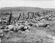 MIKAN 3397293 Warwicks (British) July, 1916. July, 1916 [Warwicks (British) July, 1916., July, 1916]