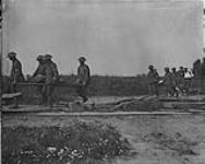 MIKAN 3395772 Wounded arriving at the Trench Railway. August, 1916. Aug., 1916. [Wounded arriving at the Trench Railway. August, 1916., Aug., 1916.]