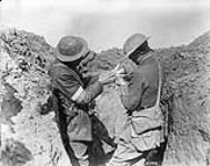 MIKAN 3381018 H.M. Pigeon Service. Fixing message to the bird previous to leaving the trench. May, 1917. May, 1917. [225 KB, 1000 X 791]