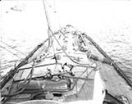 MIKAN 3402021 With the Grand Fleet. Feb., 1917. [With the Grand Fleet., Feb., 1917.]