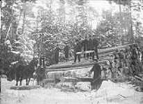 MIKAN 3372231 [Lumbering operations in the Ottawa Valley.]. n.d. [[Lumbering operations in the Ottawa Valley.]., n.d.]