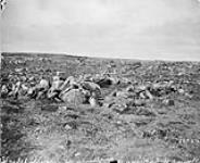 MIKAN 3327783 Ruins of Inuit dwellings at the mouth of Chesterfield Inlet, (N.W.T.) 1893. [97 KB]