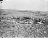 MIKAN 3327784 Ruins of Inuit dwellings at mouth of Chesterfield Inlet, (N.W.T.) 1893. [Ruins of Inuit dwellings at mouth of Chesterfield Inlet, (N.W.T.), 1893.]
