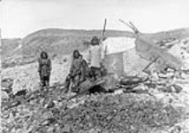 MIKAN 3406999 Inuit family at Fisher Bay [P.Q.] 1897. 1897. [Inuit family at Fisher Bay [P.Q.] 1897., 1897.]