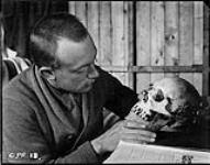 (Hudson Strait Expedition). Dr. W.J.K. Clothier examining skull at Base 'C'. [159 KB, 1000 X 784]