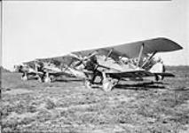 MIKAN 3643674 Armstrong Whitworth 'Siskin' IIIA aircraft of the R.C.A.F. 26 Aug. 1929 [Armstrong Whitworth 'Siskin' IIIA aircraft of the R.C.A.F., 26 Aug. 1929]
