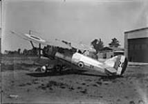 MIKAN 3204025 S/L Grandy in Siskin fighter. 20 June 1929 [S/L Grandy in Siskin fighter., 20 June 1929]