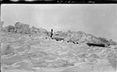 MIKAN 3407933 B.M. McConnell [sledge party, Alaska], 1914. 1913 - 1914 [B.M. McConnell [sledge party, Alaska], 1914., 1913 - 1914]
