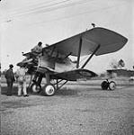 MIKAN 3203301 Armstrong Whitworth 'Siskin' IIIA aircraft 302 of the R.C.A.F. 1938 [Armstrong Whitworth 'Siskin' IIIA aircraft 302 of the R.C.A.F., 1938]