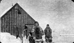 MIKAN 3629387 Ancienne station baleinière - Inspecteur Wilcox. 1924 [73 KB, 760 X 449]
