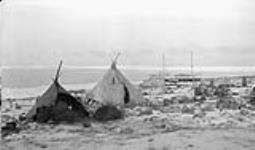 MIKAN 3208609 Skin tents on shoreline. ca.1926-1943. [Skin tents on shoreline., ca.1926-1943.]
