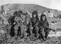 MIKAN 3628779 De jeunes Inuits assis sur un traîneau à chiens également appelé kometik. [Illauttannak (2e à droite) et Miqqussaaq (extrême droite). Les autres  non identifiées.]. Septembre 1922 [De jeunes Inuits assis sur un traîneau à chiens également appelé kometik. [Illauttannak (2e à droite) et Miqqussaaq (extrême droite). Les autres non identifiées.]., Septembre 1922]