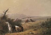 MIKAN 2833895 Approaching Buffalo. 1867. [Approaching Buffalo., 1867.]