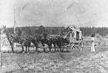 MIKAN 3401672 [Stage coach, Cariboo Trail]. [early 1900]. [[Stage coach, Cariboo Trail]., [early 1900].]