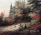 MIKAN 2836644 Shooting the Rapids. 1861 [Shooting the Rapids., 1861]
