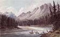 MIKAN 2896760 À la recherche d'un gué, rivière McGillivray (l'actuelle rivière Kootenay) juillet 28 ? , 1845 [68 KB, 640 X 396]