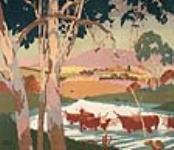 MIKAN 2834268 Cattle Raising, Australia,. 1926-1934 [84 KB, 640 X 549]